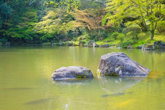 Experience Naritasan Park