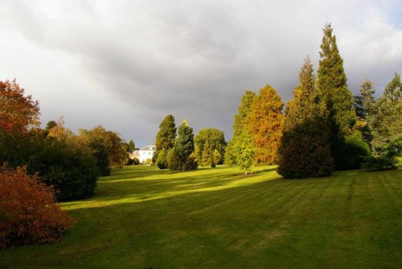 Glorious Autumn Colours at West Lodge Park